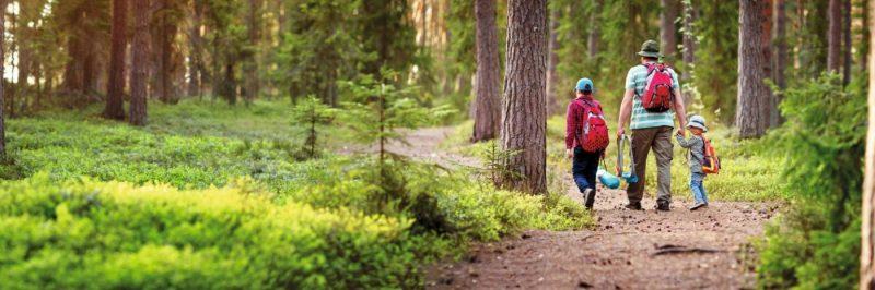 Здравословна разходка в планината