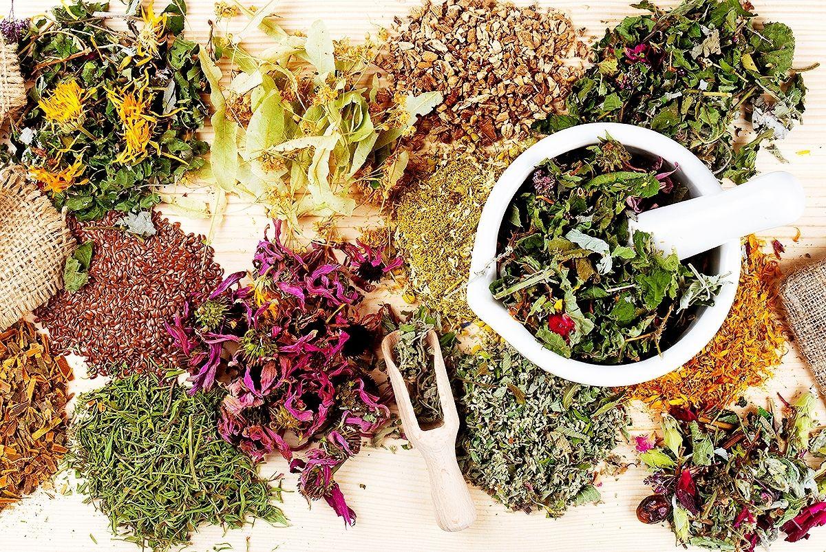 Снимка на различни билки за борба със сезонно заболяване