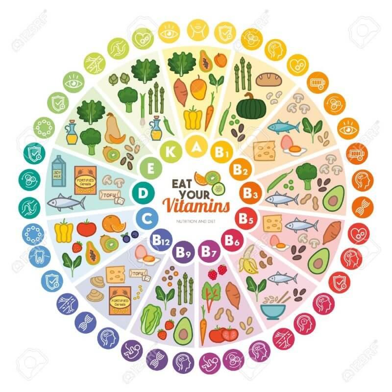 Витамини и храните, от които можем да си осигурим - визуална схема.