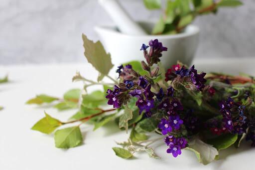 Натурални средства при кашлица - природни продукти като билки, пчелен мед, и пчелни продукти.