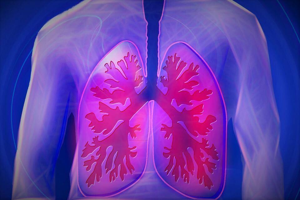 За лечението на дихателната система при влажна кашлица се необходими вещества предизвикващи отхрачване на секретите.