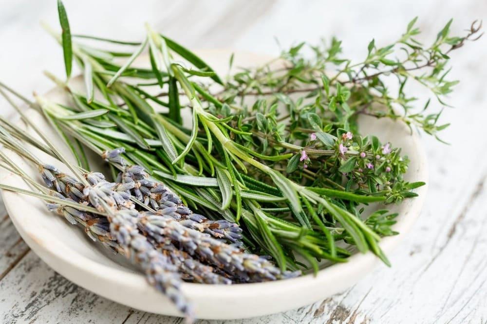 Мирта Медикус се обръщаме към лечебната сила на природата, която е неизчерпаем източник полезни вещества. Нашите продукти съдържат комплекс от естествени съставки.